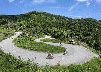 Location de chalet dans les Vosges
